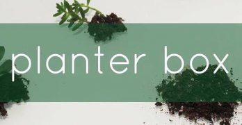 Planter Box: A Monthly Surprise that just Keeps Growing