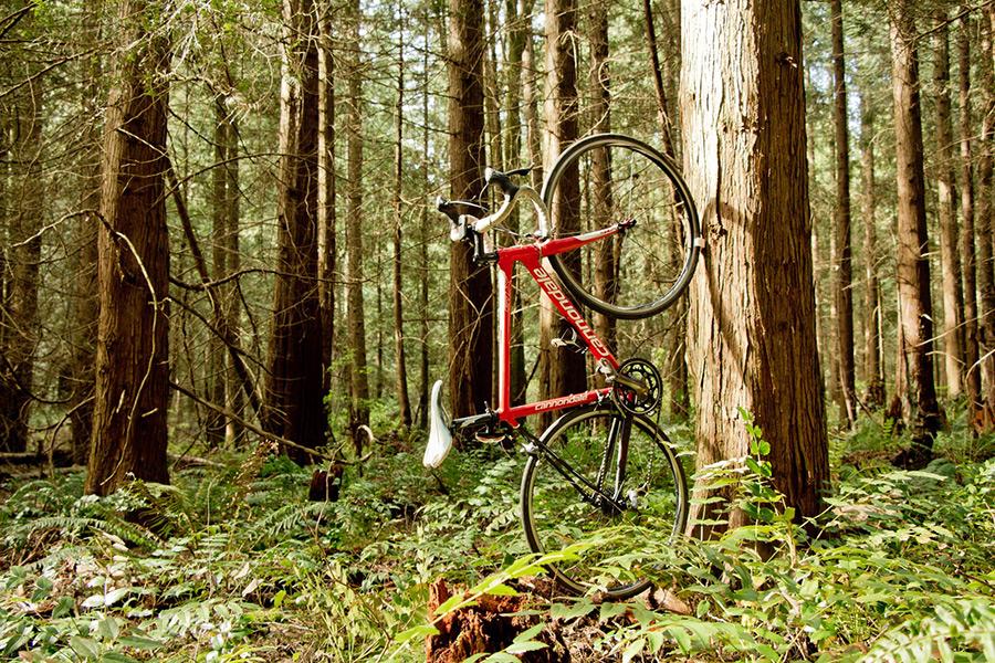clug-bike-storage
