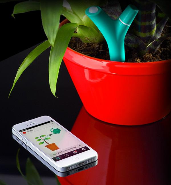 flower power app