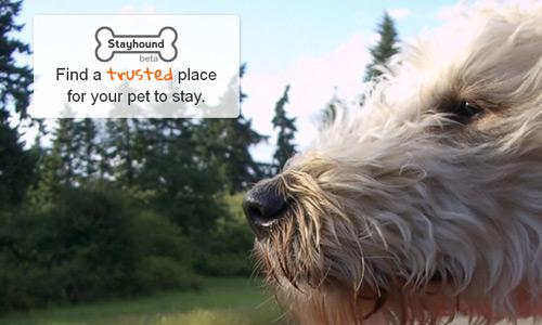 stayhound