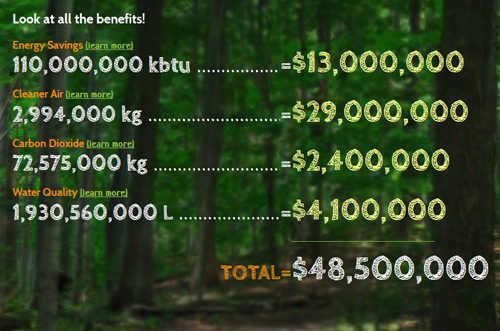 Benefits of Tree Planting over 40 years